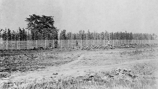 The Sapporo Hops Plantation, built in 1877